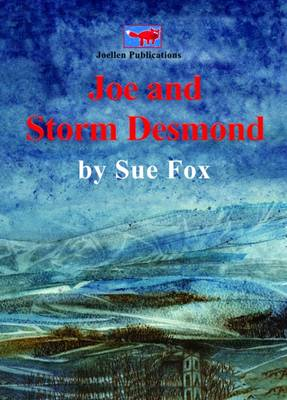 Joe Joe and Storm Desmond: Adventures, Emotions and Practicalities of Being Flooded as Seen from Viewpoint of a Youngster (Paperback)