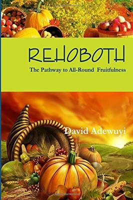 Rehoboth: The Pathway to All Round Fruitfulness: Volume 1 (Paperback)