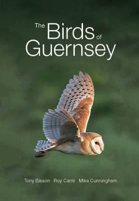 The Birds of Guernsey: A Systematic List (Paperback)