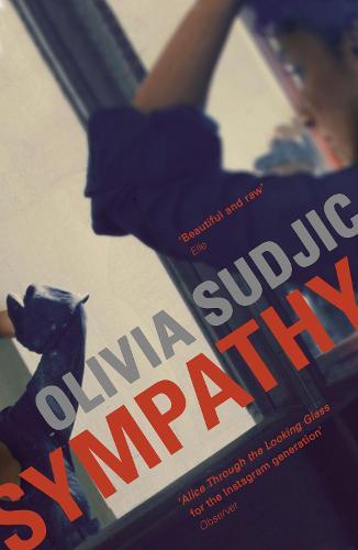 Sympathy (Paperback)