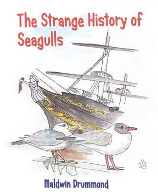 The Strange History of Seagulls (Paperback)
