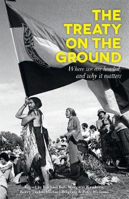 The Treaty on the Ground: Where we are headed, and why it matters (Paperback)