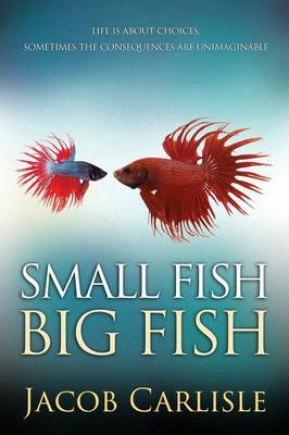Small Fish Big Fish: U.S. Edition (Paperback)