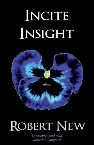 Incite Insight (Paperback)