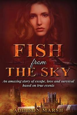 Fish from the Sky (Paperback)
