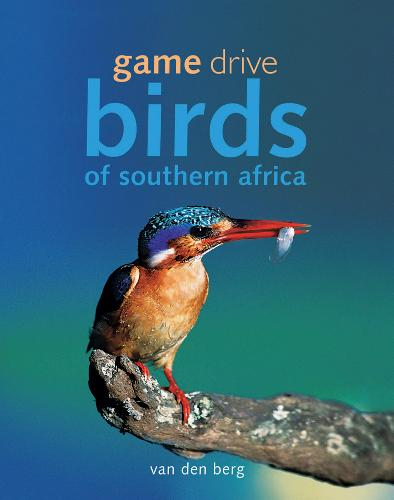 Game Drive Birds of Southern Africa (Hardback)