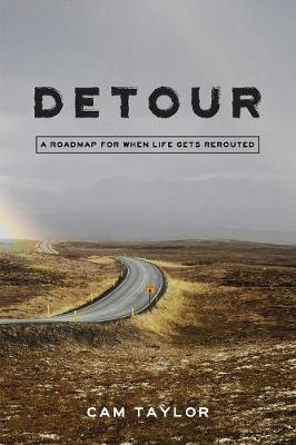 Detour: A Roadmap for When Life Gets Rerouted (Paperback)