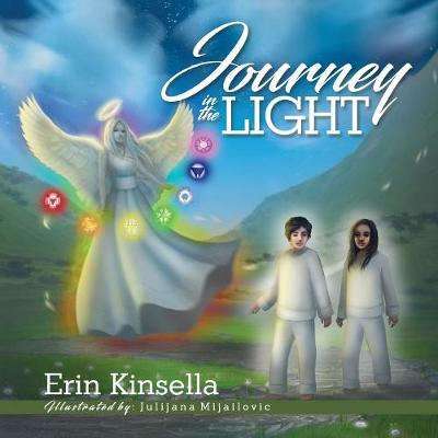 Journey in the Light (Paperback)