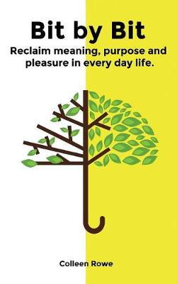 Bit by Bit: reclaim meaning, purpose and pleasure in everyday life (Paperback)
