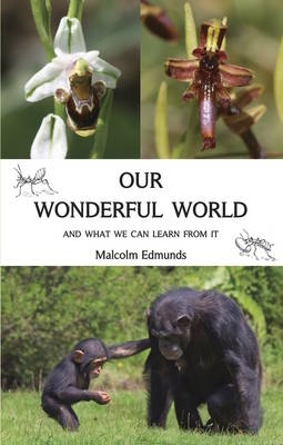 Our Wonderful World (Paperback)