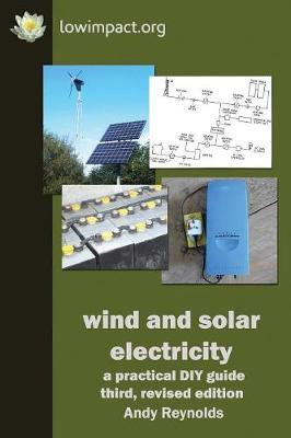 Wind & Solar Electricity: A Practical DIY Guide (Paperback)