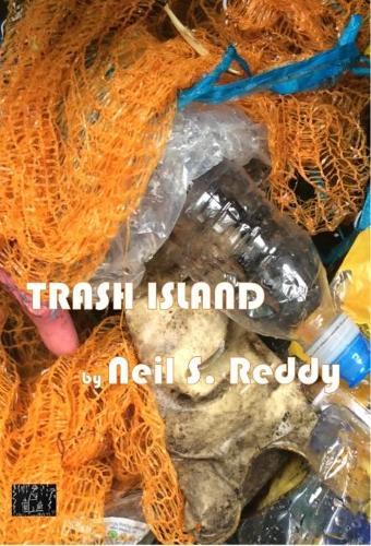 Trash Island (Paperback)