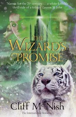 The Wizard's Promise - The Doomspell Trilogy 3 (Paperback)