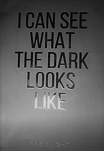 I Can See What The Dark Looks Like (Paperback)