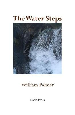 The Water Steps (Paperback)