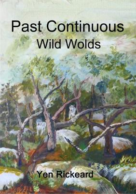 Past Continuous - Wild Wolds: The Danny Sharp Series 'Time and Again' - Time and Again 3 (Paperback)
