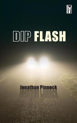 Dip Flash (Paperback)