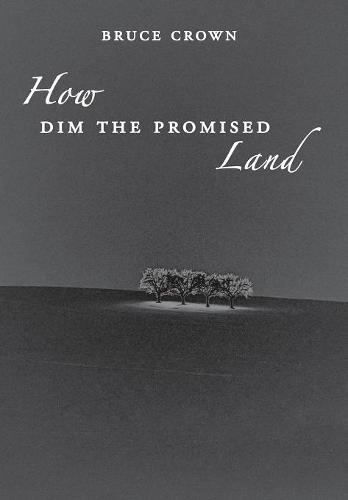 How Dim the Promised Land (Hardback)