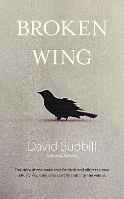 Broken Wing (Paperback)