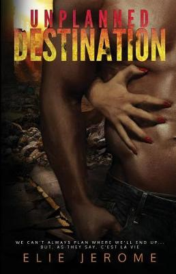 Unplanned Destination (Paperback)