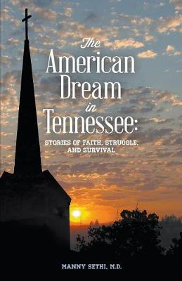 American Dream in Tennessee: Stories of Faith, Struggle, and Survival (Paperback)