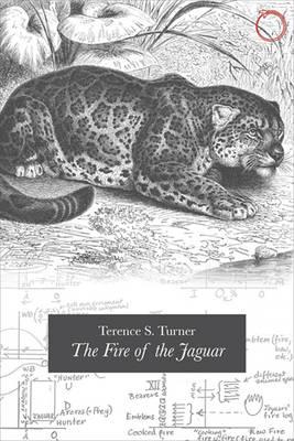 Fire of the Jaguar (Paperback)