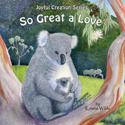 So Great a Love - Joyful Creation 2 (Paperback)