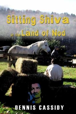 Sitting Shiva in the Land of Nod (Paperback)