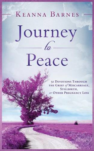 Journey to Peace: 31 Devotions Through the Grief of Miscarriage, Stillbirth, or Other Pregnancy Loss (Paperback)