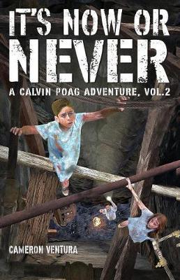 It's Now or Never: A Calvin Poag Adventure, Vol. 2 (Paperback)