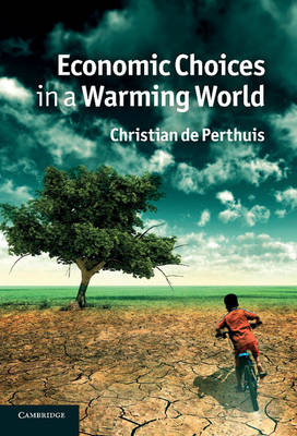 Economic Choices in a Warming World (Hardback)