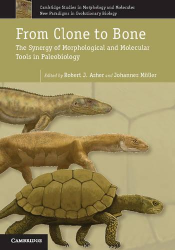 From Clone to Bone: The Synergy of Morphological and Molecular Tools in Palaeobiology - Cambridge Studies in Morphology and Molecules: New Paradigms in Evolutionary Bio 4 (Hardback)