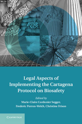 Legal Aspects of Implementing the Cartagena Protocol on Biosafety - Treaty Implementation for Sustainable Development (Hardback)