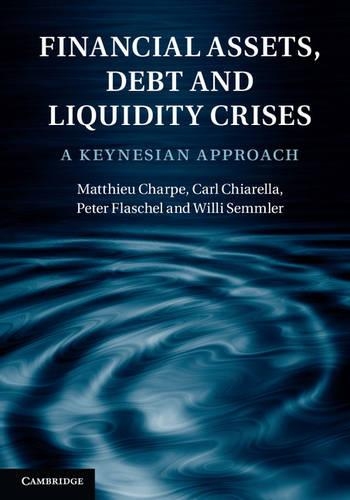 Financial Assets, Debt and Liquidity Crises: A Keynesian Approach (Hardback)