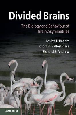 Divided Brains: The Biology and Behaviour of Brain Asymmetries (Hardback)
