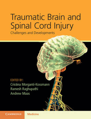 Traumatic Brain and Spinal Cord Injury: Challenges and Developments (Hardback)