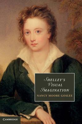 Shelley's Visual Imagination - Cambridge Studies in Romanticism 90 (Hardback)