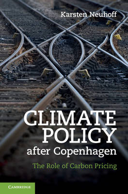Climate Policy after Copenhagen: The Role of Carbon Pricing (Hardback)
