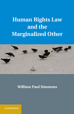 Human Rights Law and the Marginalized Other (Hardback)