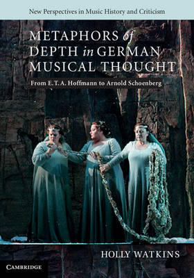 New Perspectives in Music History and Criticism: Metaphors of Depth in German Musical Thought: From E. T. A. Hoffmann to Arnold Schoenberg Series Number 21 (Hardback)
