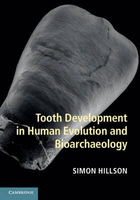 Tooth Development in Human Evolution and Bioarchaeology (Hardback)
