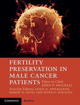 Fertility Preservation in Male Cancer Patients (Hardback)