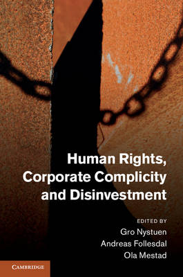 Human Rights, Corporate Complicity and Disinvestment (Hardback)