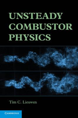 Unsteady Combustor Physics (Hardback)