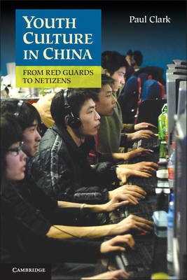 Youth Culture in China: From Red Guards to Netizens (Hardback)