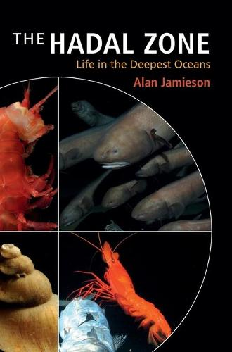 The Hadal Zone: Life in the Deepest Oceans (Hardback)
