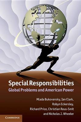 Special Responsibilities: Global Problems and American Power (Hardback)