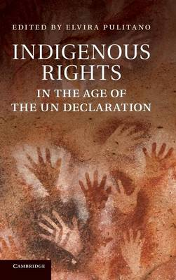 Indigenous Rights in the Age of the UN Declaration (Hardback)