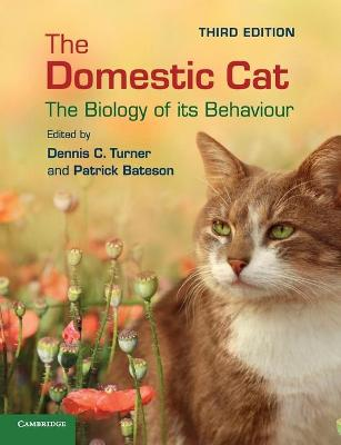 The Domestic Cat: The Biology of its Behaviour (Paperback)