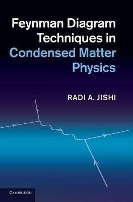 Feynman Diagram Techniques in Condensed Matter Physics (Hardback)